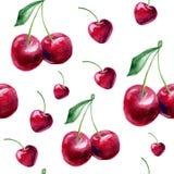 Безшовная картина с вишнями акварели Иллюстрация штока