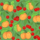 Безшовная картина с вишнями и абрикосами Стоковая Фотография