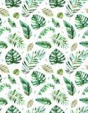 Безшовная картина с высококачественной рукой покрасила листья акварели тропические Тропическое собрание леса иллюстрация штока