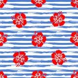 Безшовная картина с гибискусом цветет на striped предпосылке Тропическая иллюстрация лета вектор Стоковое Фото