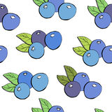 Безшовная картина с голубиками Иллюстрация штока