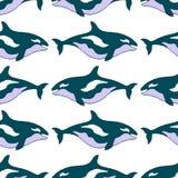 Безшовная картина с голубой дельфин-касаткой также вектор иллюстрации притяжки corel Стоковые Изображения RF