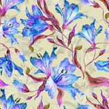 Безшовная картина с голубыми лилиями Стоковое Изображение