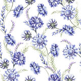 Безшовная картина с голубыми wildflowers изображение иллюстрации летания клюва декоративное своя бумажная акварель ласточки части иллюстрация штока