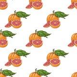 Безшовная картина с грейпфрутами Стоковые Фото