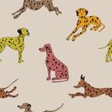 Безшовная картина с далматинской собакой стоковые фото