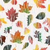 Безшовная картина с деревом осени выходит в дождь Стоковые Фотографии RF