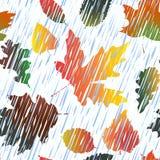 Безшовная картина с деревом осени выходит в дождь Стоковое Изображение RF