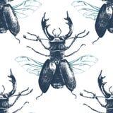 Безшовная картина с жуком оленей Стоковые Изображения