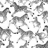 Безшовная картина с зебрами иллюстрация штока