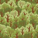 Безшовная картина с зеленым лиственным лесом. Стоковые Фото