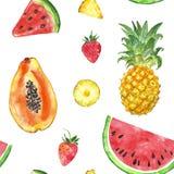 Безшовная картина с изолированными плодами лета акварели экзотическими - кусок арбуза, ананас, папапайя, клубника иллюстрация вектора
