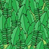 Безшовная картина с листьями ладони в стиле шаржа Стоковое Фото