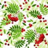 Безшовная картина с листьями и ягодами рябины. бесплатная иллюстрация