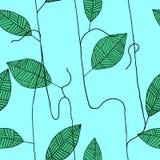 Безшовная картина с листьями нарисованными рукой Стоковые Изображения