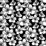Безшовная картина с иллюстрацией вектора запаса цветков Стоковые Фотографии RF