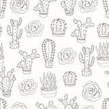 Безшовная картина с кактусами и succulents Стоковое фото RF