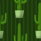 Безшовная картина с кактусом Стоковое Фото