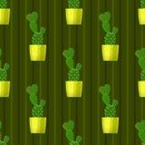 Безшовная картина с кактусом Стоковое Изображение RF