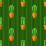 Безшовная картина с кактусом Стоковые Изображения RF
