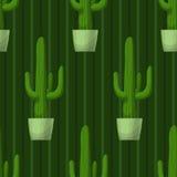 Безшовная картина с кактусом Стоковая Фотография RF