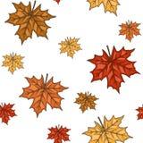 Безшовная картина с кленовыми листами осени также вектор иллюстрации притяжки corel Стоковые Изображения