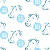 Безшовная картина с коровой Стоковые Изображения RF