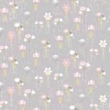 Безшовная картина с красивейшими цветками Стоковое Фото