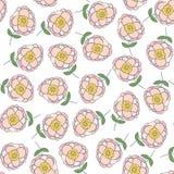 Безшовная картина с красивыми розовыми цветками Бесплатная Иллюстрация