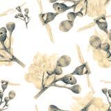 Безшовная картина с красивыми цветками и заводами весны Стоковое Изображение