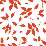 Безшовная картина с красными листьями осени на белизне также вектор иллюстрации притяжки corel Стоковая Фотография RF