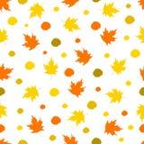 Безшовная картина с красочными кленовыми листами и точками на whit Стоковые Изображения