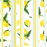 Безшовная картина с лимонами и листьями и половина лимона, картины акварели Стоковые Изображения