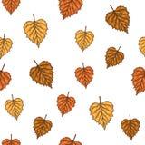 Безшовная картина с листьями березы осени также вектор иллюстрации притяжки corel Стоковые Фото