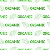 Безшовная картина с листьями зеленого цвета и слова органические Стоковое фото RF