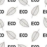 Безшовная картина с листьями и словами Eco Стоковое Фото
