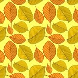 Безшовная картина с листьями осени вяза и бука иллюстрация штока