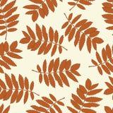 Безшовная картина с листьями осени Стоковые Фотографии RF