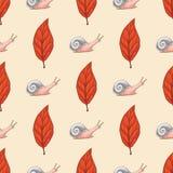 Безшовная картина с лист и улитками красного бука иллюстрация штока