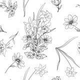 Безшовная картина с маком цветет daffodil, ветреница, фиолетовая внутри Стоковые Изображения RF