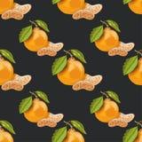 Безшовная картина с мандаринами на темной предпосылке Стоковая Фотография RF