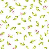 Безшовная картина с маленькими розовыми цветками Стоковые Фото