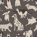 Безшовная картина с милыми собаками стоковая фотография