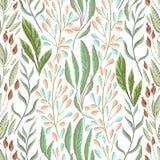 Безшовная картина с морскими заводами, листьями и морской водорослью Флора нарисованная рукой морская в стиле акварели бесплатная иллюстрация