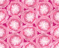 Безшовная картина с нежными цветками Стоковые Фотографии RF