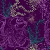 Безшовная картина с осьминогом, медузами, морскими заводами и морской водорослью Винтажная рука нарисованная морская флора и фаун иллюстрация вектора