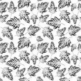 Безшовная картина с отпечатками листьев Стоковая Фотография