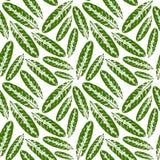Безшовная картина с отпечатками листьев Стоковые Фотографии RF