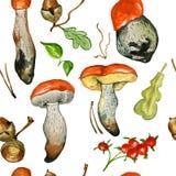 Безшовная картина с одичалыми грибами Стоковые Изображения RF