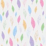 Безшовная картина с пер других цветов Стоковое Фото